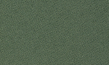 BW-229ForestGreen